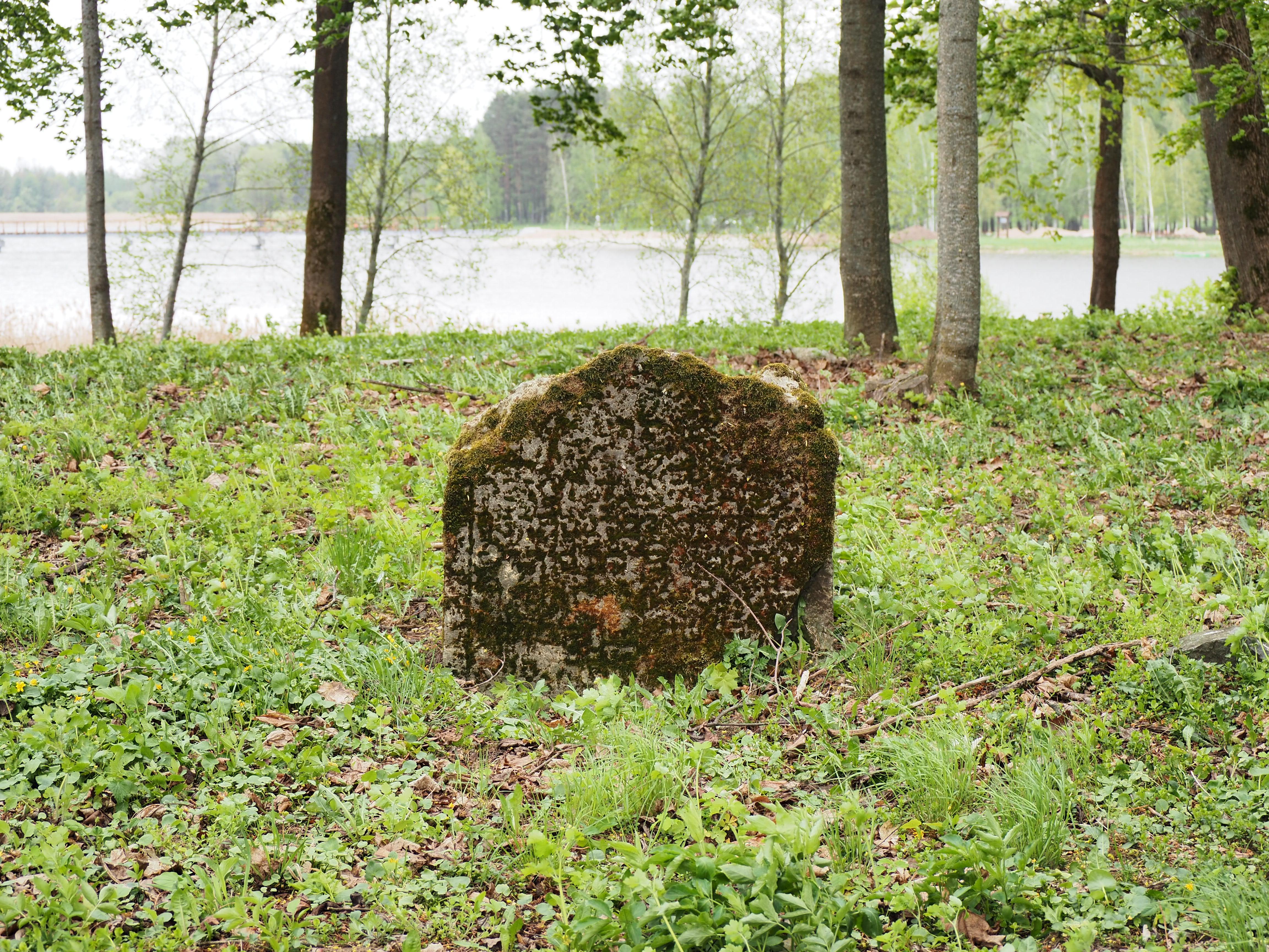 Fot. Adam J. Dubiński